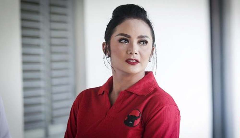Gara-gara Krisdayanti, PSI Minta Gaji Anggota DPR Dipotong
